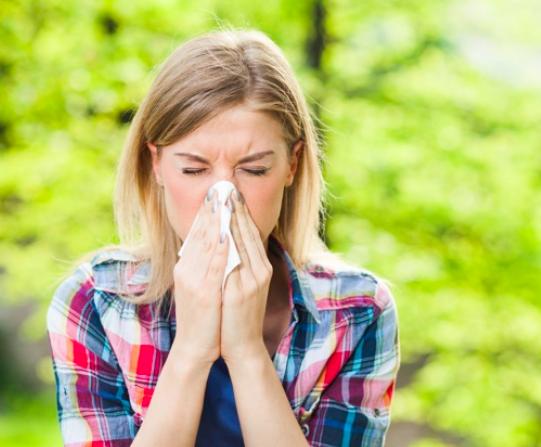 2019年花粉症予防!花粉症対策になる食べ物・飲み物まとめ!