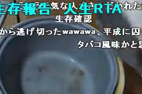 生存確認(報告)人生RTAとは?意味や元ネタは?アル中カラカラwawawaの動画が由来?